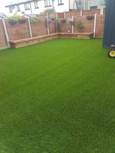 picture of bermuda grass